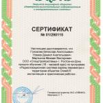 Сертификат Спецстройсистемы Элвис