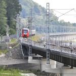 Ласточка на мосту (2)